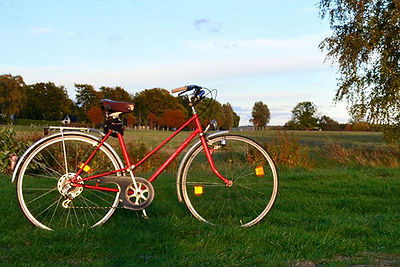 bicycle in the countryside.jpg