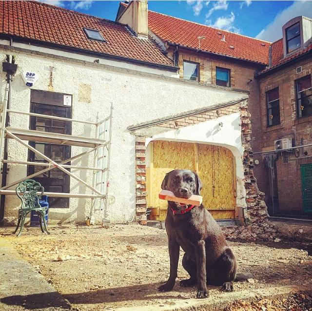 Coates and dog
