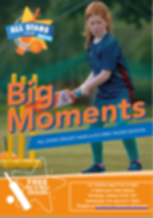 cricket poster.png