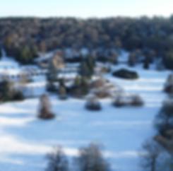 Tyntesfield in snow 2019.PNG