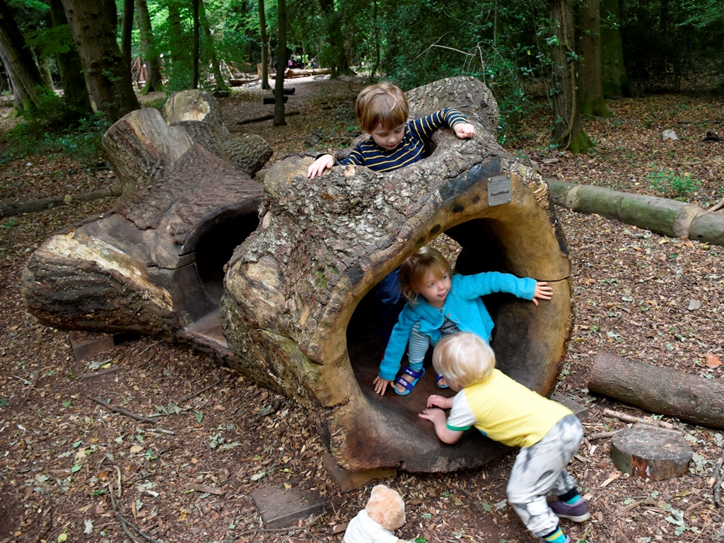 Children playing in the hollow log at Leigh Woods (c) National Trust-Alana Wright