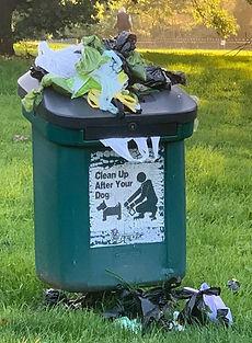 Rubbish bin.JPEG