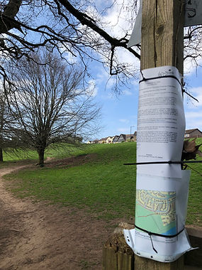 The Perrings town green notice.JPEG