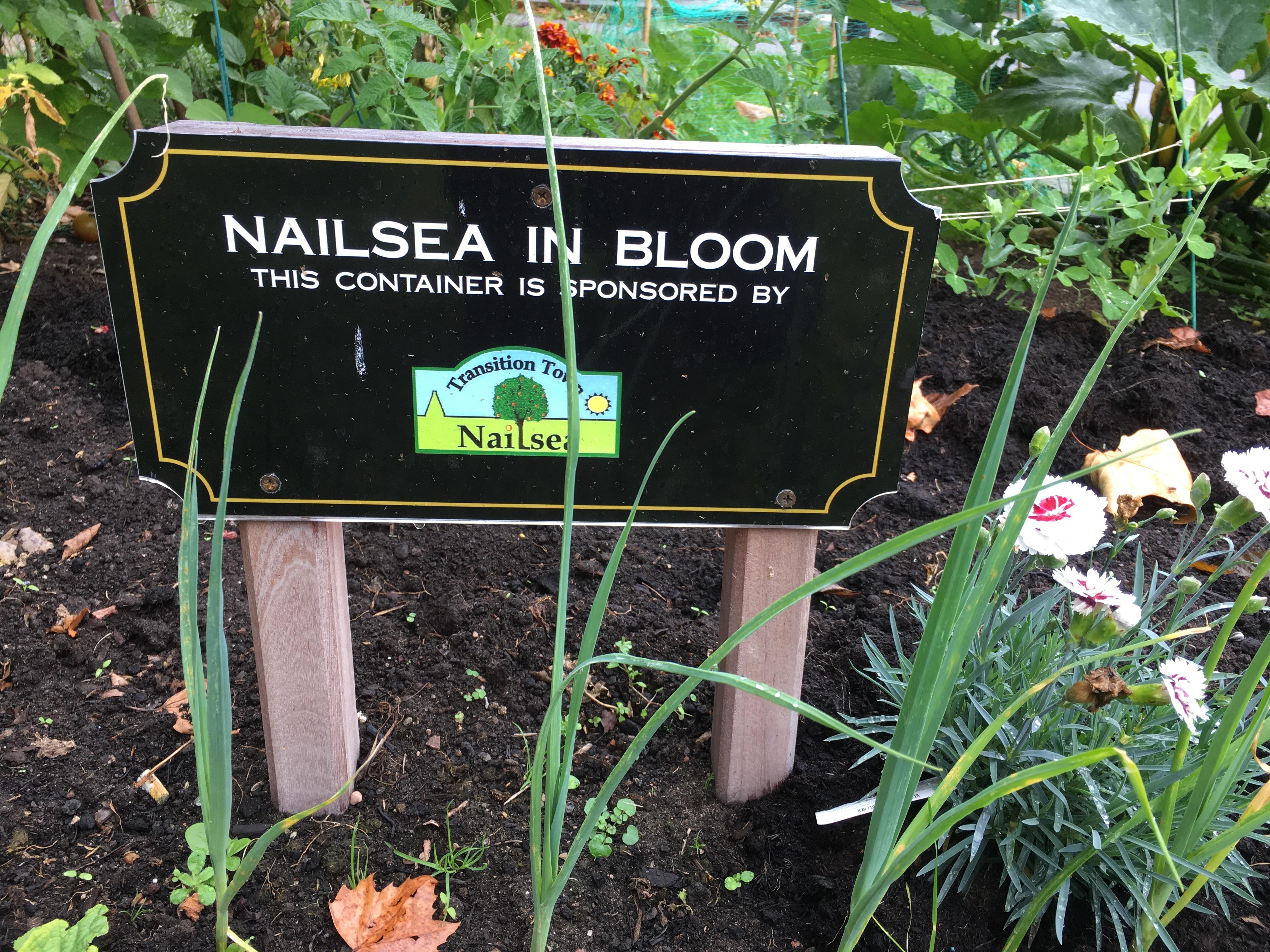 Nailsea In Bloom plaque