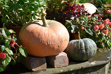Tyntesfield poetic pumpkin 4 (c) Nationa