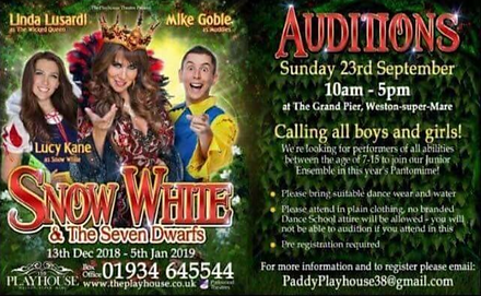 panto auditions.PNG