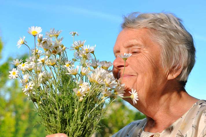 Senior woman smelling flowers on blue sk