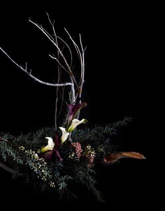 Vanita Floral 2.jpg