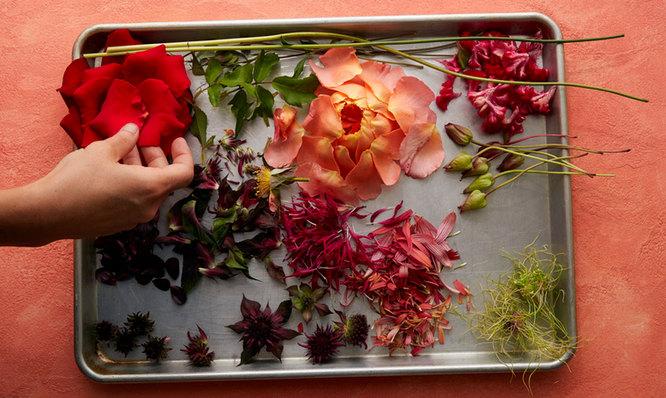 Vanita Floral 6.jpg