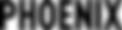 PX Logo Hi Res black transparent bg.png