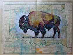 Bison Map