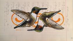 Hummingbirds Dance