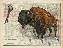 Buffalo_Map2