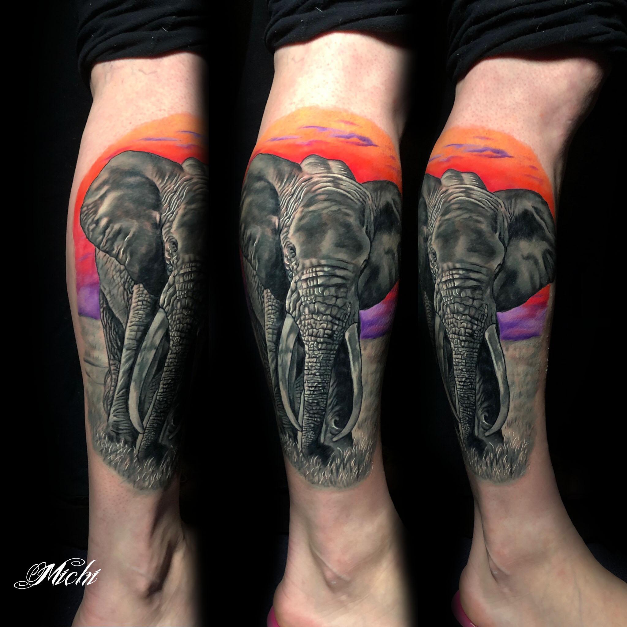 elephantcoverup