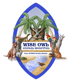 Wise Owl Animal Hospital Logo