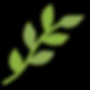 iconfinder_branch-leaf-spring-easter-nat