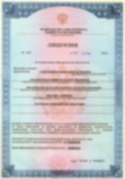 Лицензия сторона 1.jpg