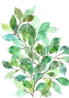 Leaves No 1.jpeg