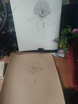 Red clover linocut printing process.jpg