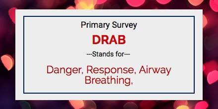 What is the primary survey - Fleximed first aid training