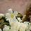 Thumbnail: All White tulipanes grande