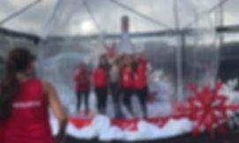 Bubble Huts LLC- Lifesize Crystal Globe.