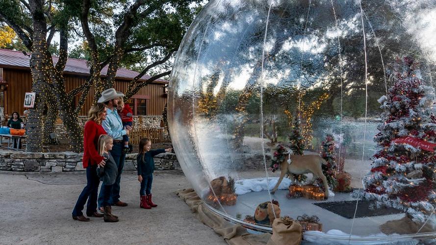SnowGlobe - Bubble Huts LLC.jpg