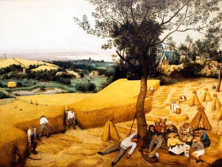 Wheat by Jean Jaurès