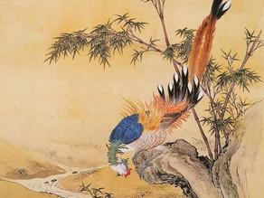 Chinese Mountain Man: The Phoenix