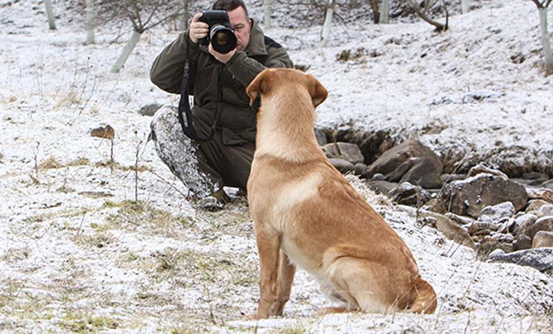 Nick-Ridley-Dog-Photographer-2.jpg
