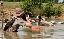 Nick-Ridley-Dog-Photographer-3.jpg