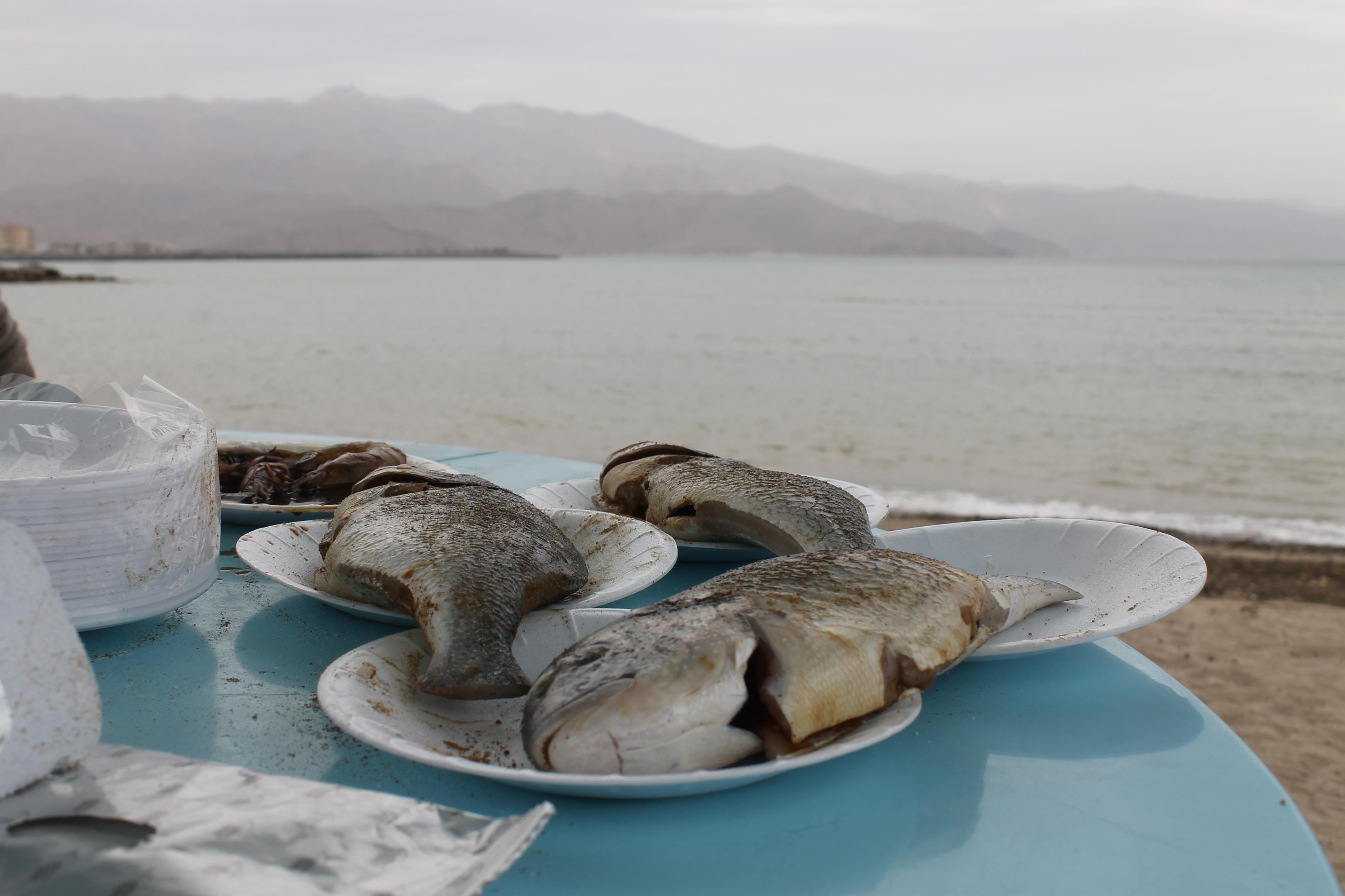 Рыба на фоне моря