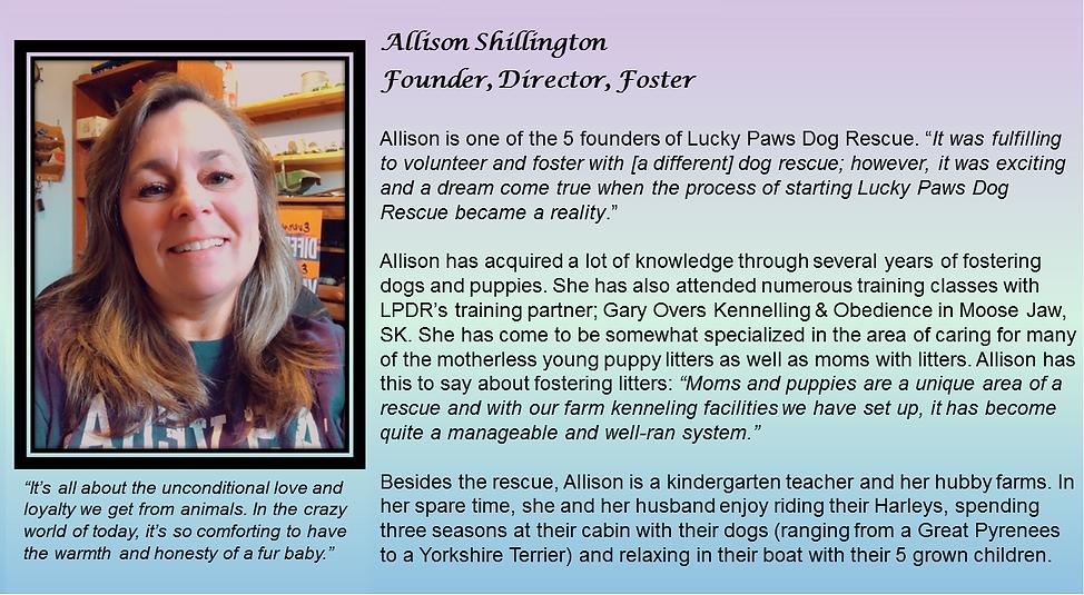 Allison Bio All Together.png