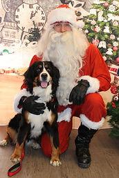 Santa Lucky Paws Dec.16,17 037.jpg