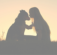 Dog%20and%20woman%20silhouette%20sunset_