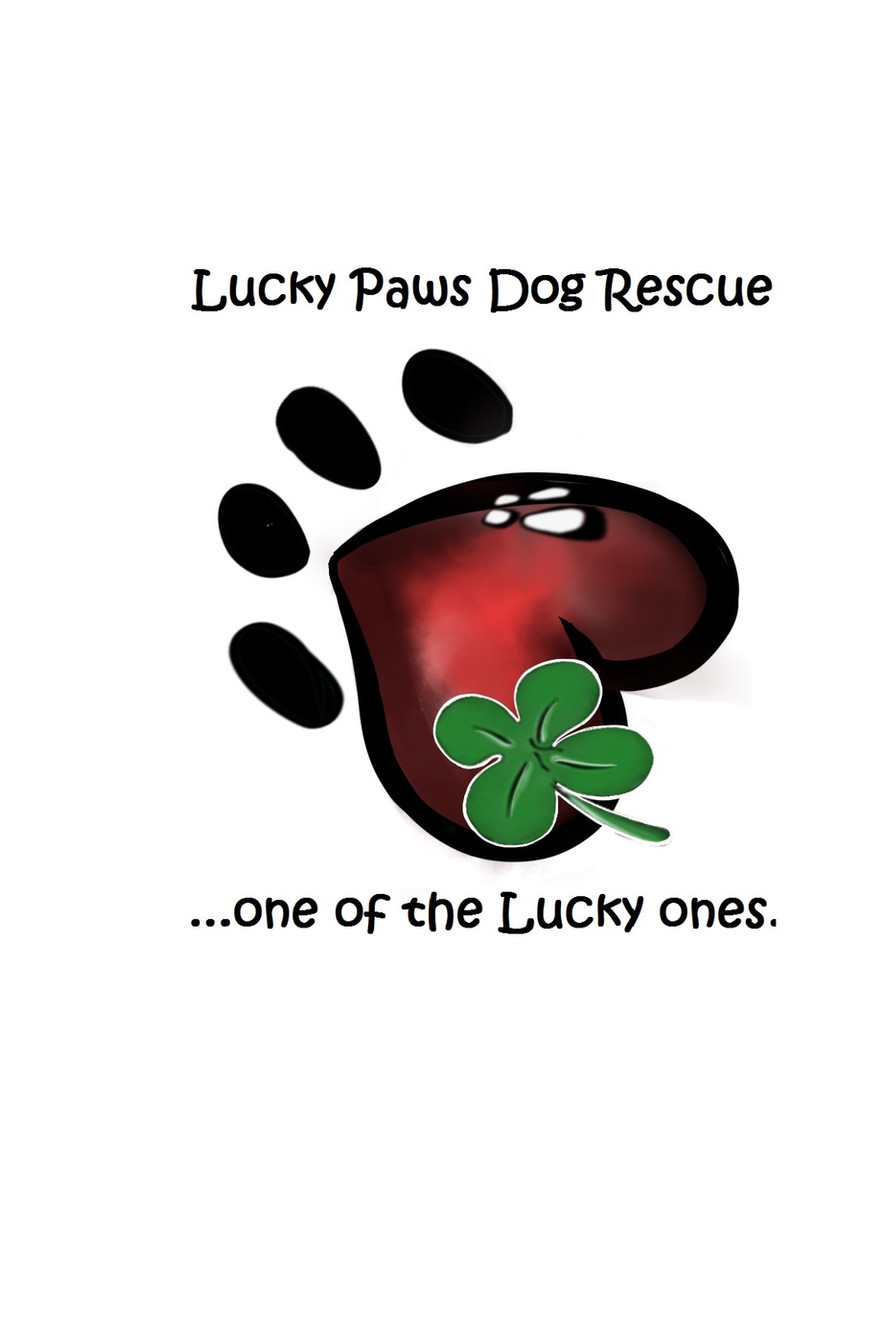 Lucky Paws Dog Rescue Regina Saskatchewan