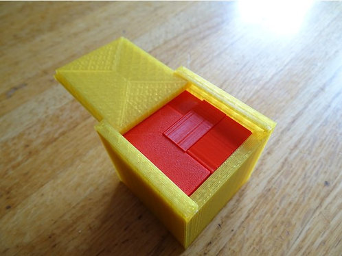 Puzzle cube with case