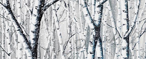 Birch Trees - Blue