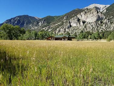 Chalk Creek Meadows 2.jpg