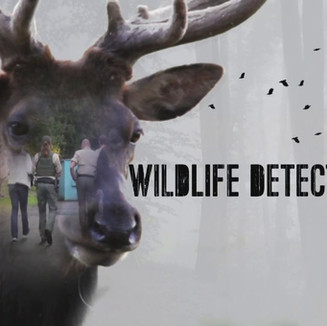 Wildlife Detectives