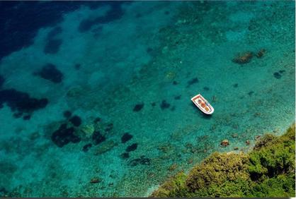 Capri Italia.png