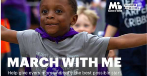 March for Babies Annual Fundraiser Drive