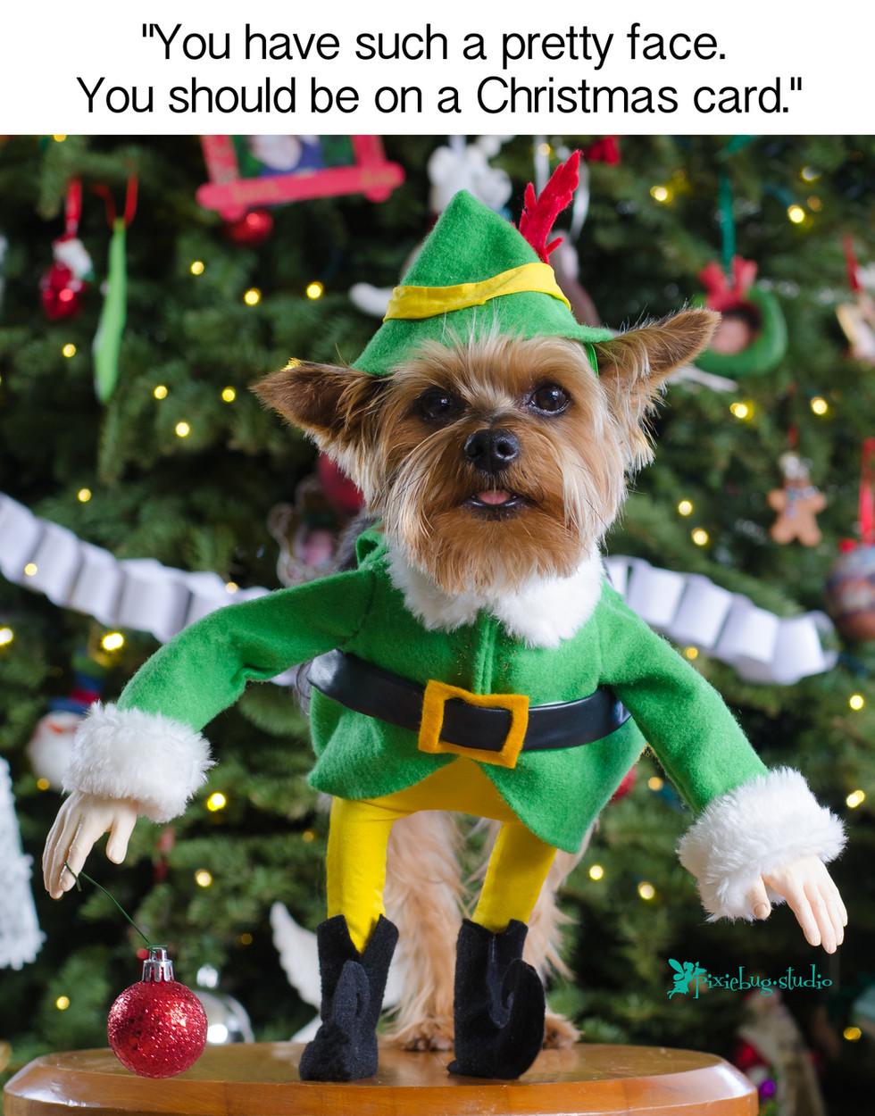 Jack the Elf from Pixiebug Studio