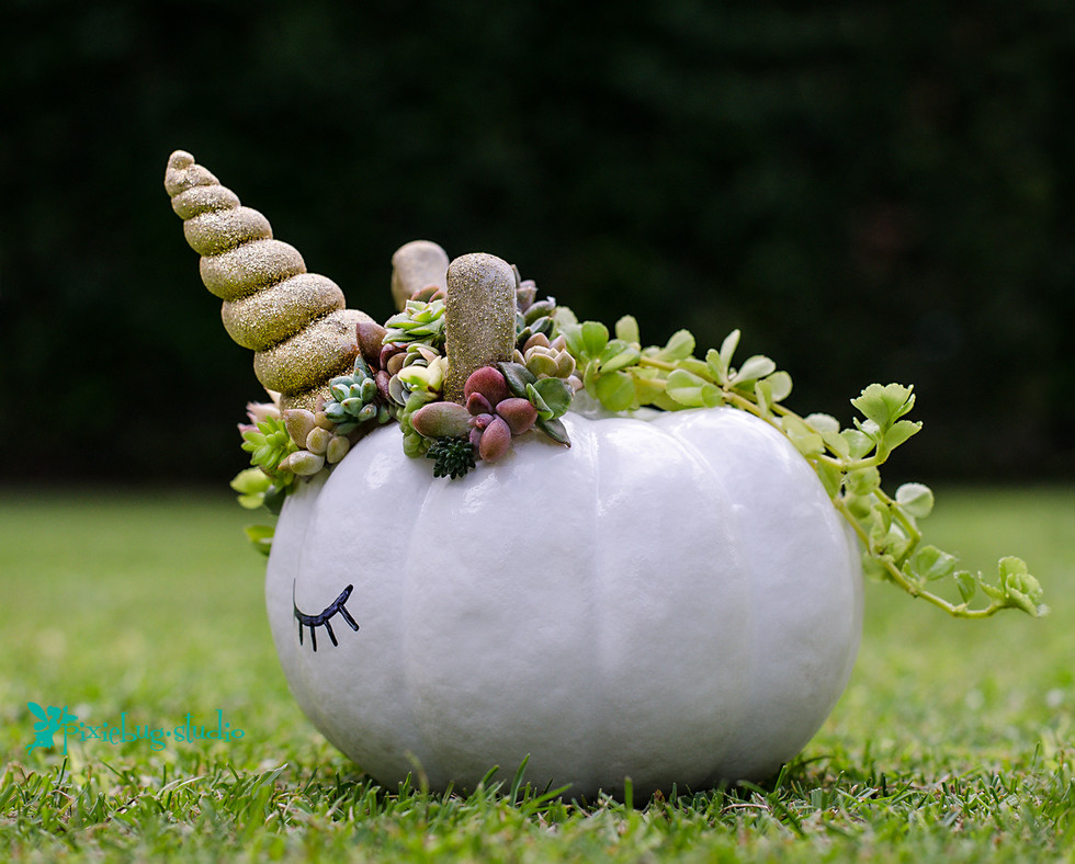 Succulent Unicorn Pumpkin by Pixiebug Studio