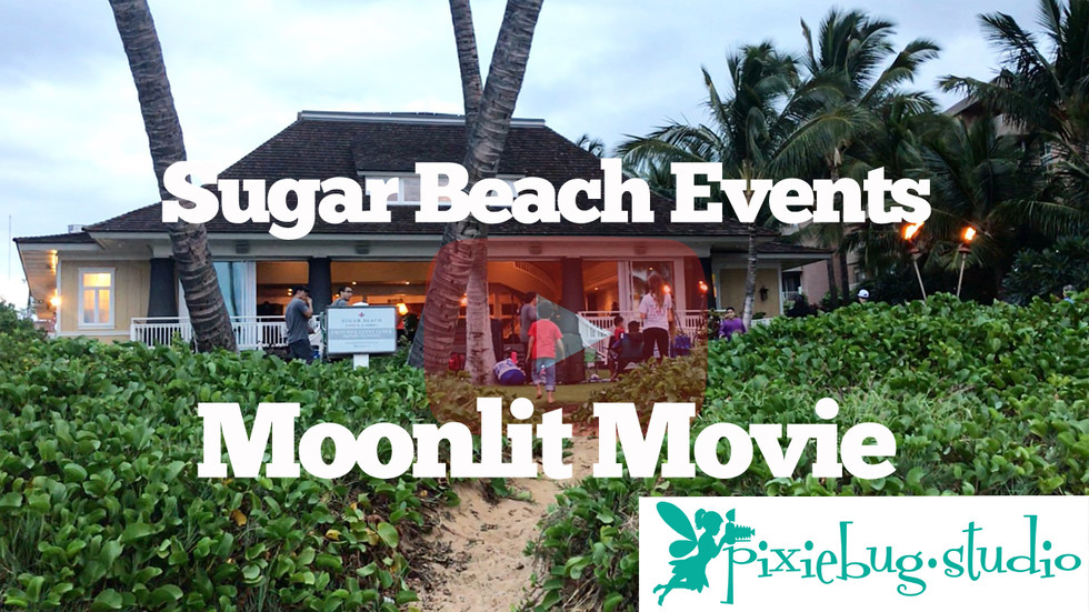 Sugar Beach Events Moonlit Movie with Pixiebug Studio