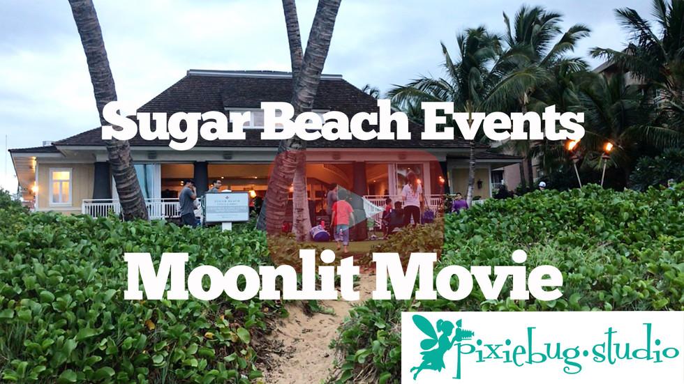 Sugar Beach Events Moonlit Movie with Pixiebug Studio