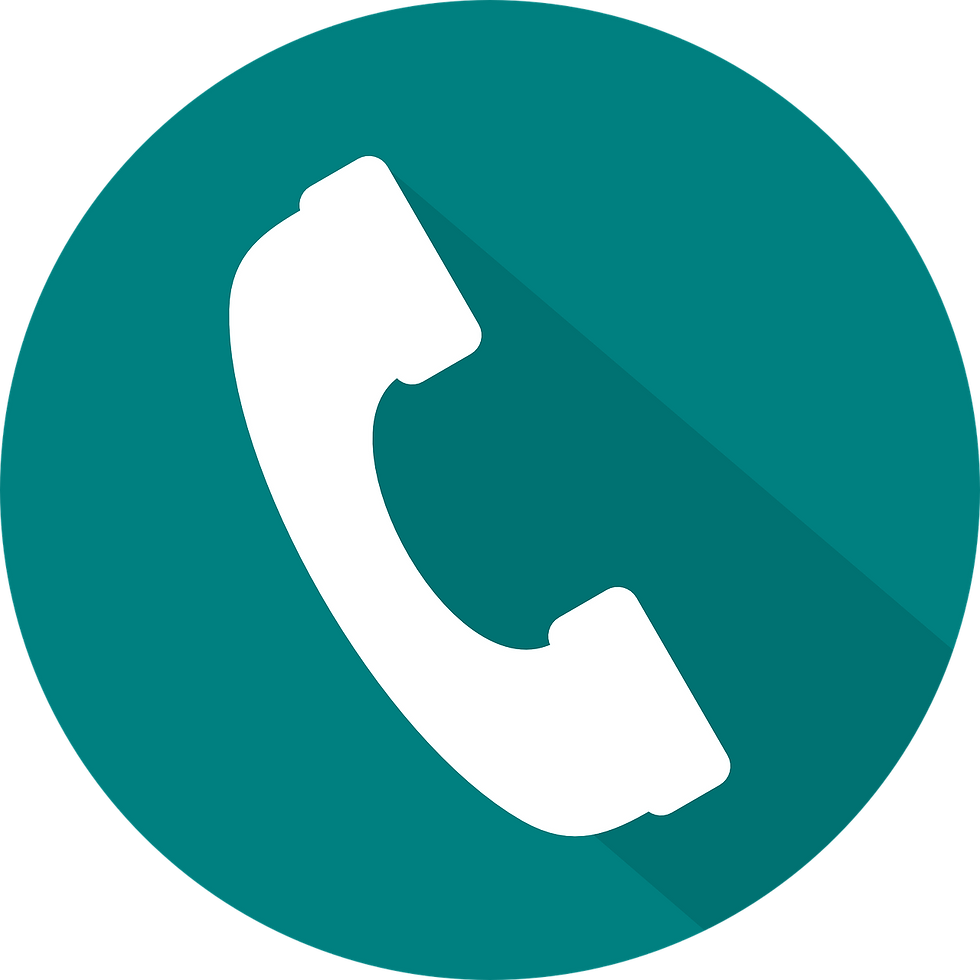 Phone Call Action Icon