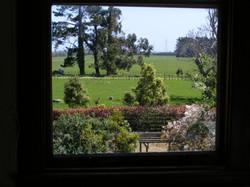 Garden rm fields w