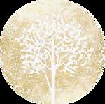logo Barbara.png