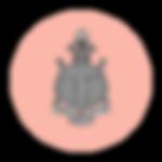 dg-symbol-crest.png